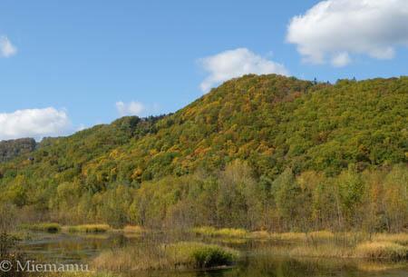 七色の噴水~10月の東川_d0340565_19332820.jpg