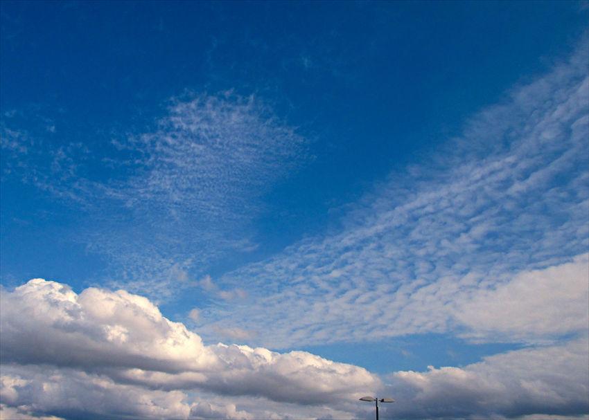 雲  (夏と秋の雲が混在している?)_a0105680_15251082.jpg