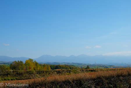秋の【ケンとメリーの木】~10月の美瑛_d0340565_20270197.jpg