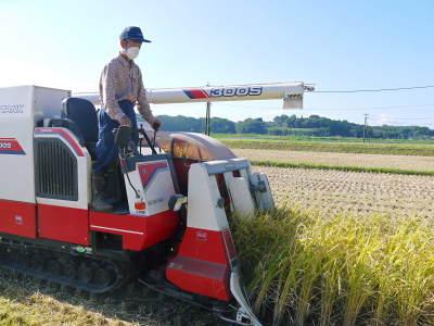 七城米 長尾農園 美しすぎる田んぼの稲刈り(2021) 新米の出荷は10月下旬からの予定です!(前編) _a0254656_19580481.jpg