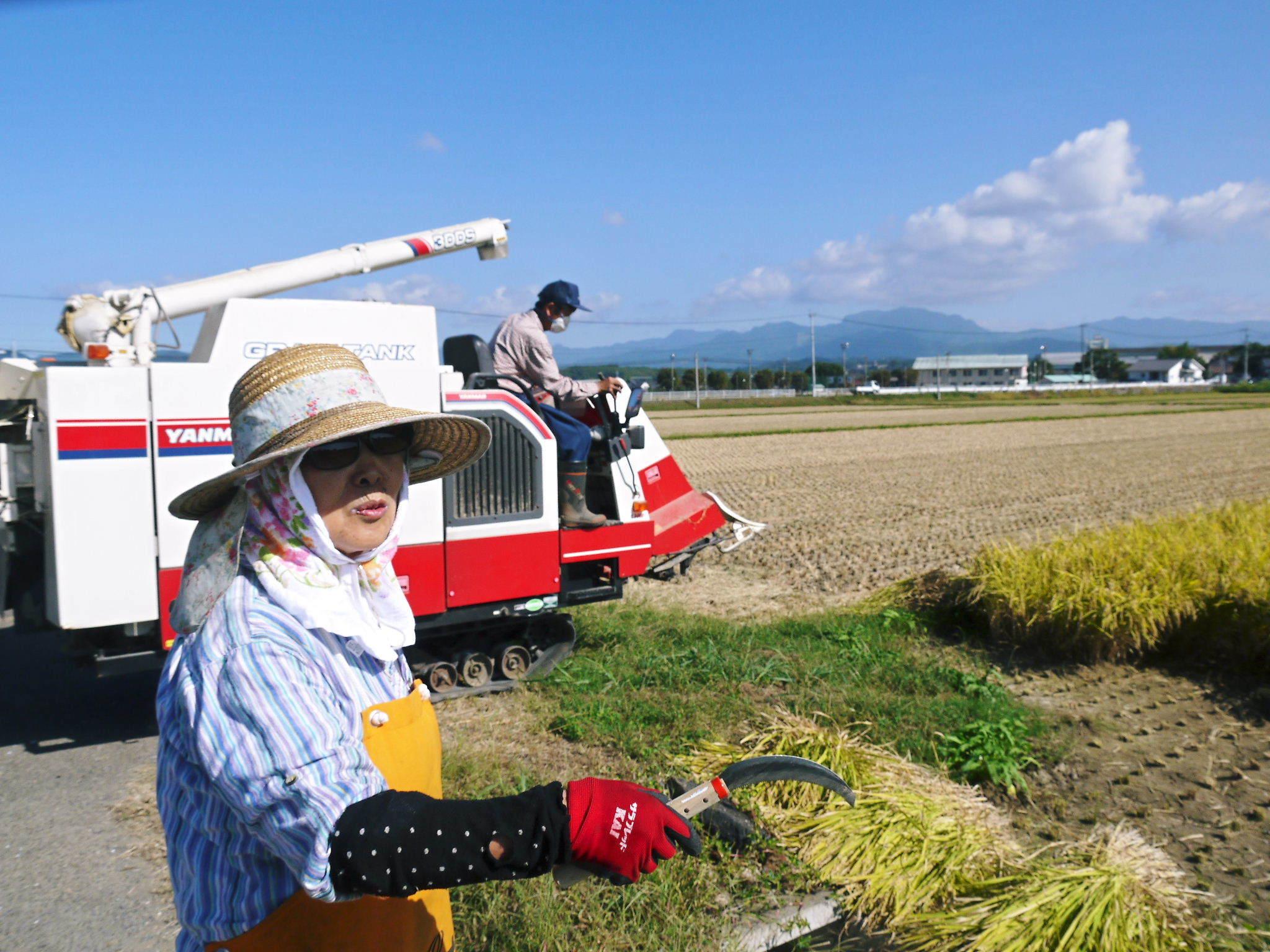 七城米 長尾農園 美しすぎる田んぼの稲刈り(2021) 新米の出荷は10月下旬からの予定です!(前編) _a0254656_20024061.jpg