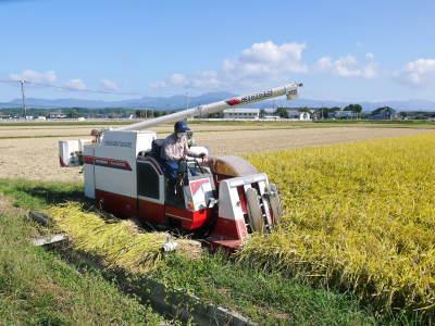七城米 長尾農園 美しすぎる田んぼの稲刈り(2021) 新米の出荷は10月下旬からの予定です!(前編) _a0254656_20063756.jpg