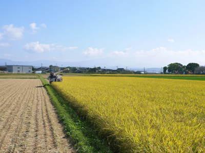 七城米 長尾農園 美しすぎる田んぼの稲刈り(2021) 新米の出荷は10月下旬からの予定です!(前編) _a0254656_20151663.jpg