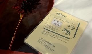 ドン・ジュアン東京初日!☆グッズと旅日記_d0379363_02221868.jpg