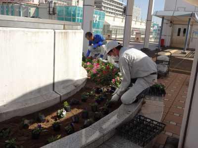 名古屋港水族館前花壇の植栽R3.10.6_d0338682_08185144.jpg