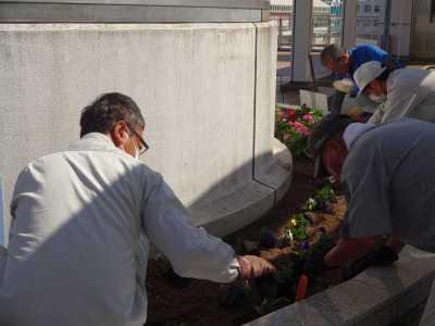 名古屋港水族館前花壇の植栽R3.10.6_d0338682_08222959.jpg