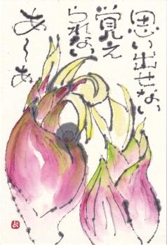 ねこちゃんとミョウガ_a0030594_21203893.jpg