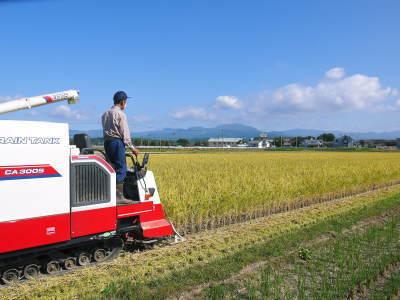 七城米 長尾農園 美しすぎる田んぼの稲刈り(2021) 新米の出荷は10月下旬からの予定です!(後編) _a0254656_17512546.jpg