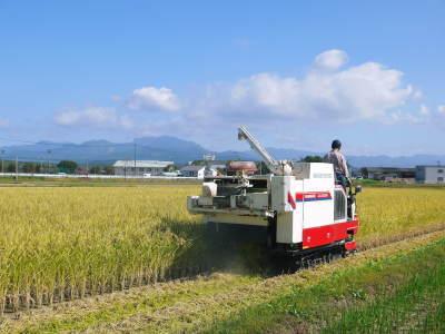 七城米 長尾農園 美しすぎる田んぼの稲刈り(2021) 新米の出荷は10月下旬からの予定です!(後編) _a0254656_18203494.jpg