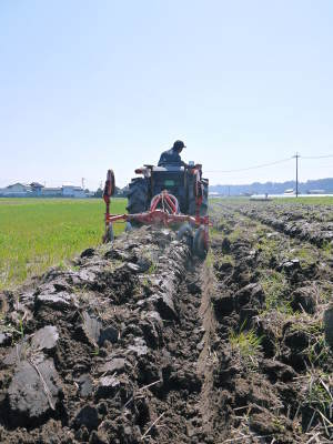 七城米 長尾農園 美しすぎる田んぼの稲刈り(2021) 新米の出荷は10月下旬からの予定です!(後編) _a0254656_18253121.jpg