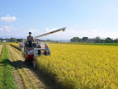 七城米 長尾農園 美しすぎる田んぼの稲刈り(2021) 新米の出荷は10月下旬からの予定です!(後編) _a0254656_18424150.jpg