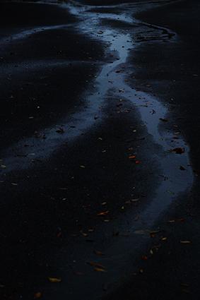 雨の河_a0011962_19280750.jpg