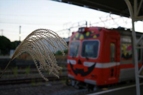 10/10 せっかく前泊したなら…行くしかない岳南電車。 _e0094492_19170466.jpg