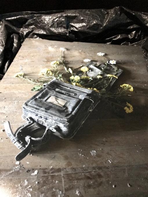 震災から10年 ~KYOTOGRAPHIE  京都国際写真祭「ECHO」@二条城二の丸御殿_b0066960_19333648.jpg