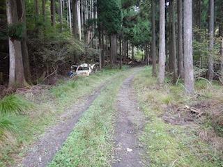 奥美濃・秋山ハイキング…藤ノ谷から西宮_c0359615_10455333.jpg