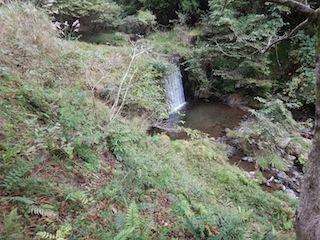奥美濃・秋山ハイキング…藤ノ谷から西宮_c0359615_10461521.jpg