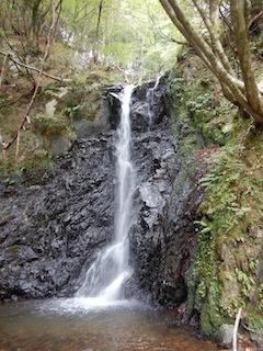 奥美濃・秋山ハイキング…藤ノ谷から西宮_c0359615_10483589.jpg