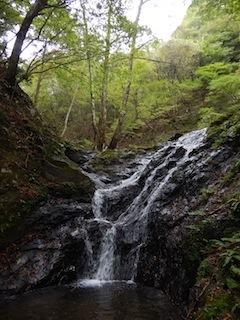 奥美濃・秋山ハイキング…藤ノ谷から西宮_c0359615_10485165.jpg