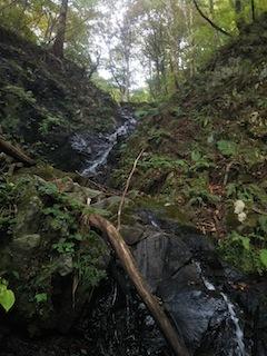 奥美濃・秋山ハイキング…藤ノ谷から西宮_c0359615_10491223.jpg