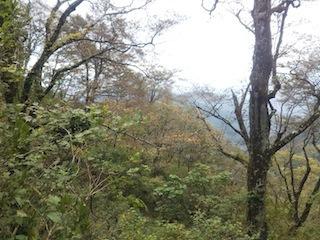 奥美濃・秋山ハイキング…藤ノ谷から西宮_c0359615_10492749.jpg