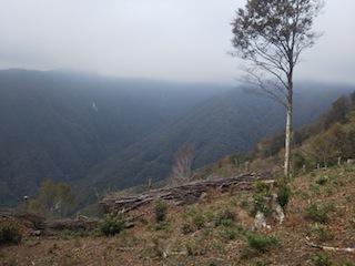奥美濃・秋山ハイキング…藤ノ谷から西宮_c0359615_10495888.jpg