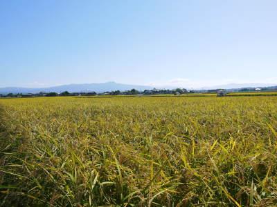 『砂田のこだわりれんげ米』の稲刈り2021 頑固おやじから引き継いだ息子さんたちが育て上げました!_a0254656_17435982.jpg