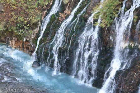 紅葉の白ひげの滝~10月の美瑛_d0340565_19360333.jpg