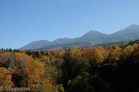 紅葉の白ひげの滝~10月の美瑛_d0340565_19361258.jpg