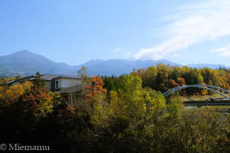 紅葉の白ひげの滝~10月の美瑛_d0340565_19361966.jpg