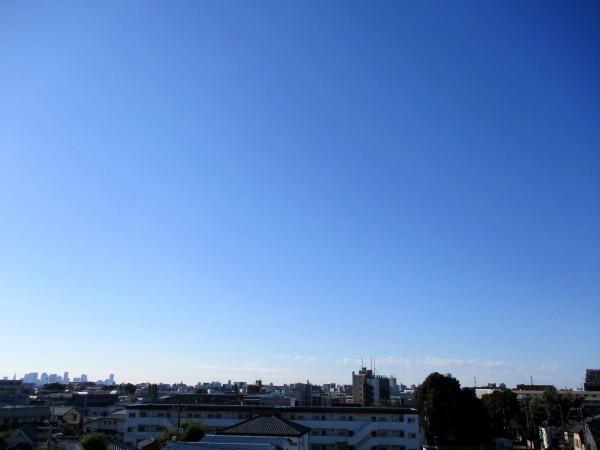 週明けは快晴_e0200101_09072283.jpg