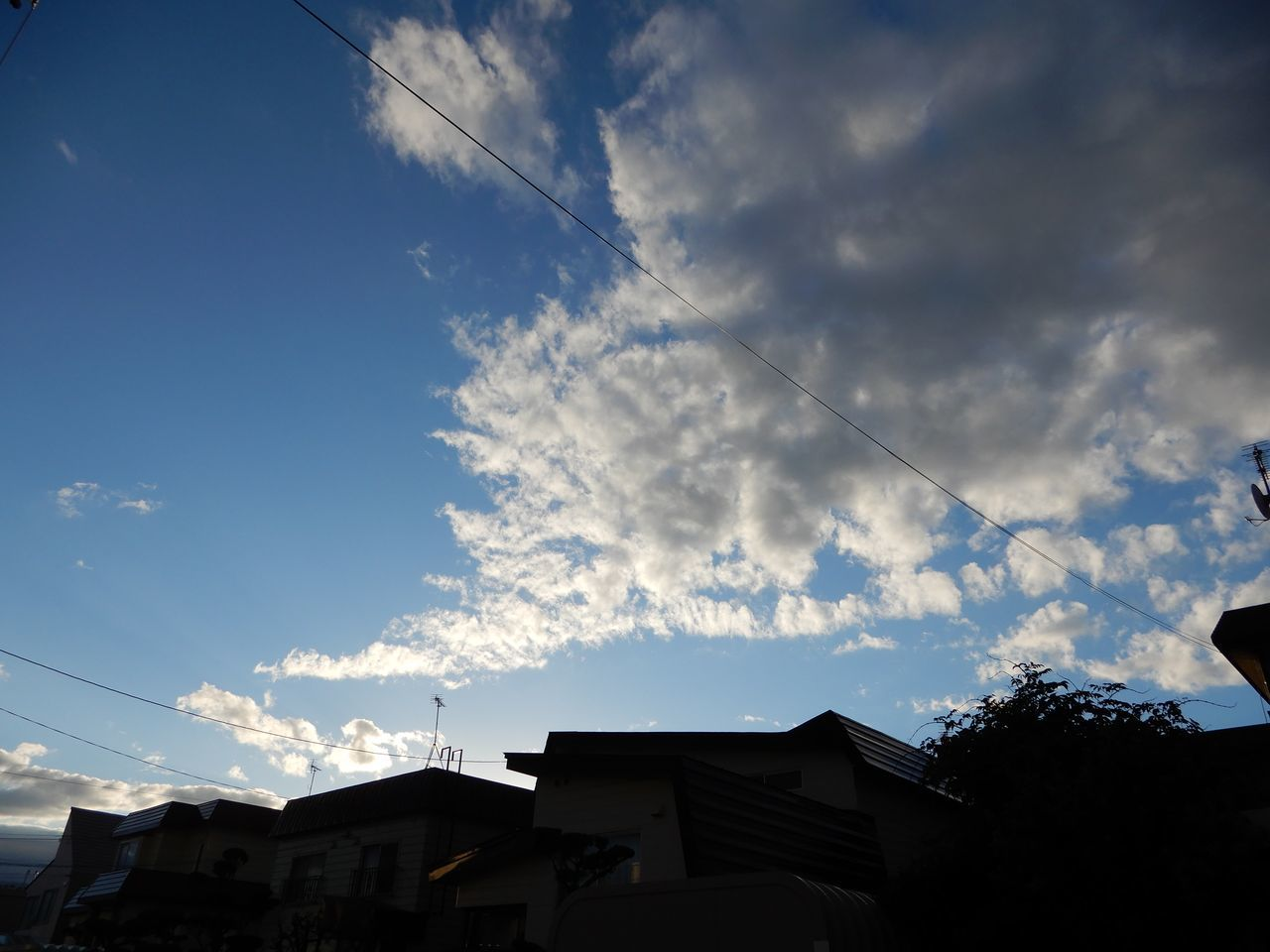 寒いながらも天候は回復_c0025115_21411036.jpg