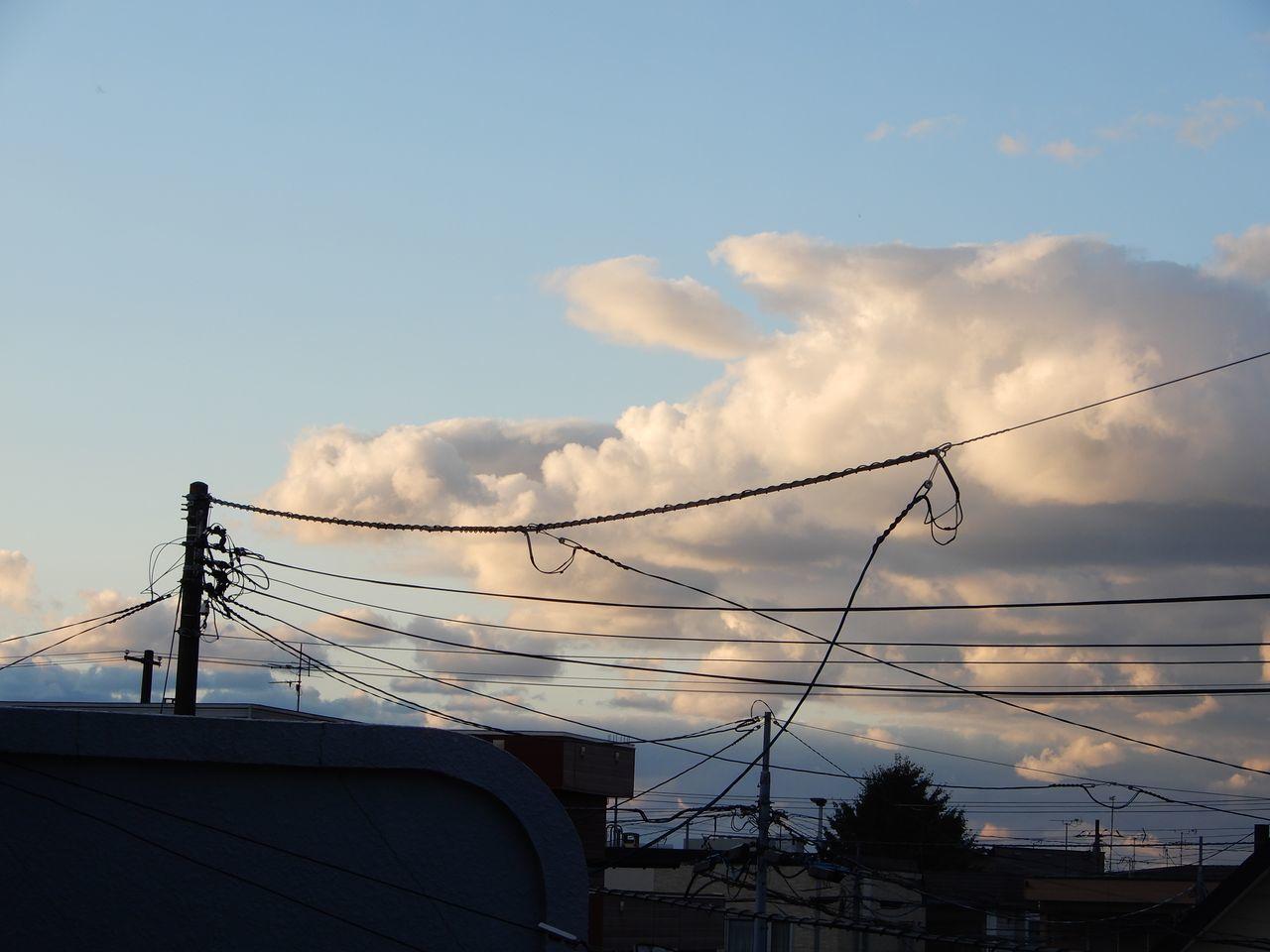 寒いながらも天候は回復_c0025115_21461499.jpg