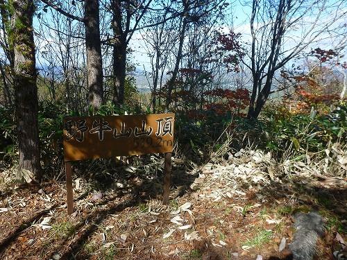 近所の秋色_c0048117_14433845.jpg