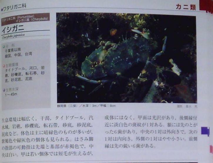 1018 図鑑を読む 2 甲殻類(カニ)_b0075059_20225470.jpg