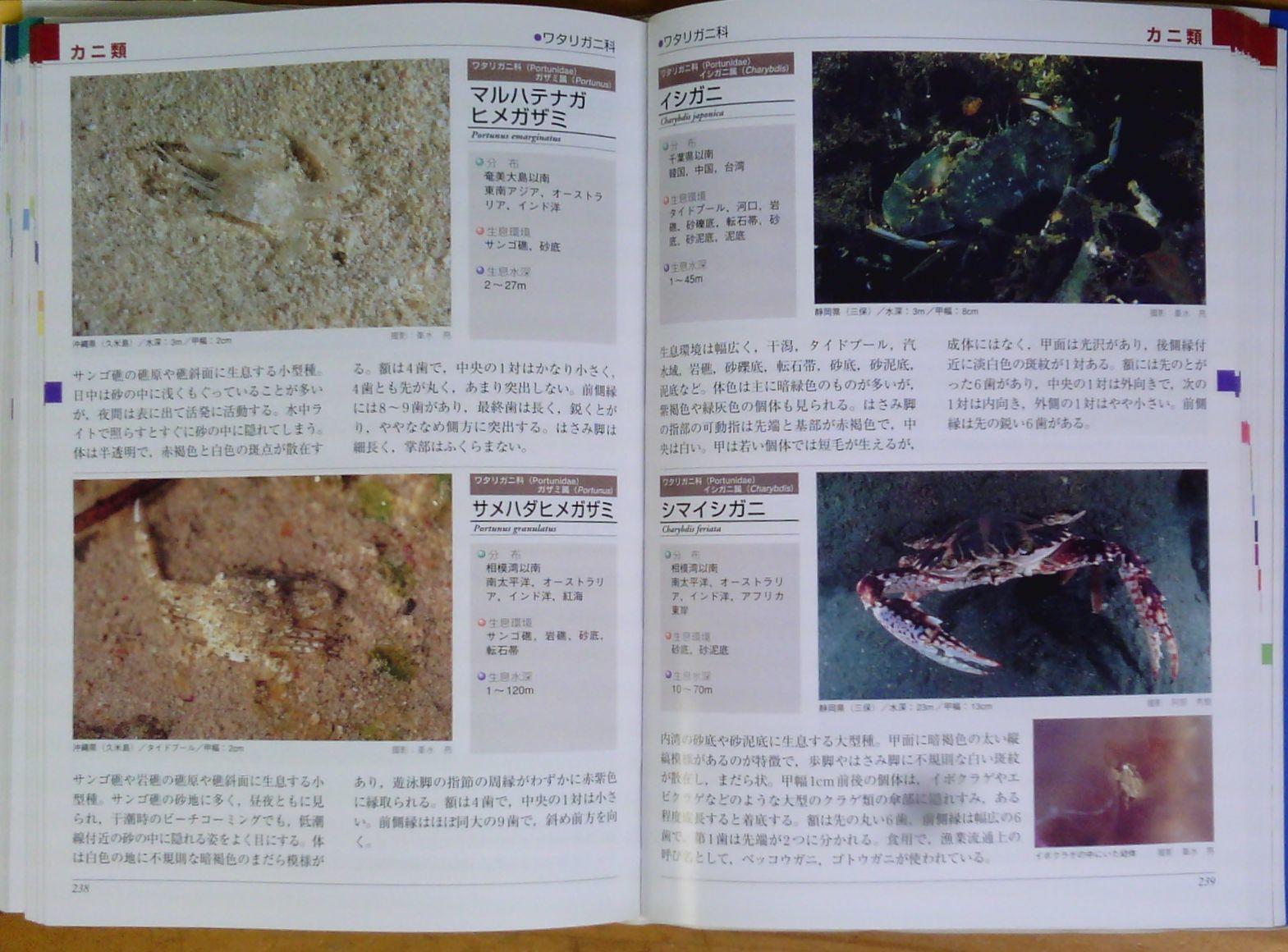 1018 図鑑を読む 2 甲殻類(カニ)_b0075059_20320100.jpg
