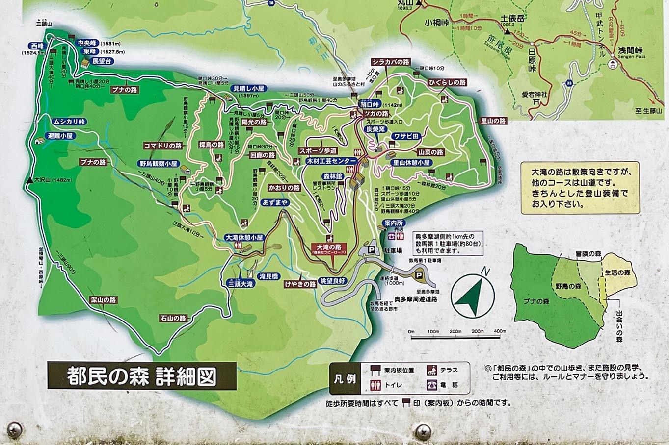 都民の森から三頭山へ 2021年10月16日_d0123571_11453739.jpg