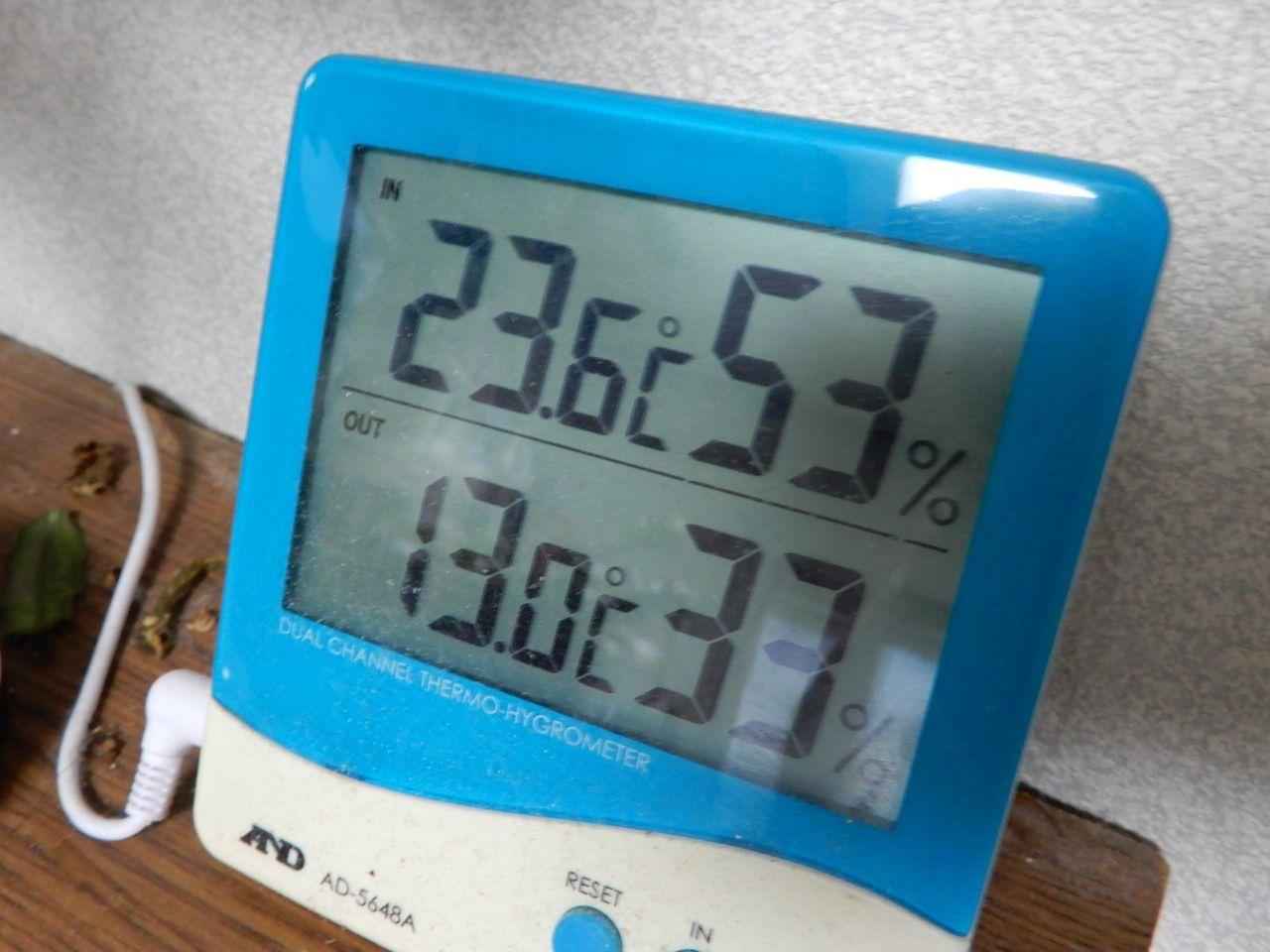 寒さは抜けて夕方から雨_c0025115_20245111.jpg