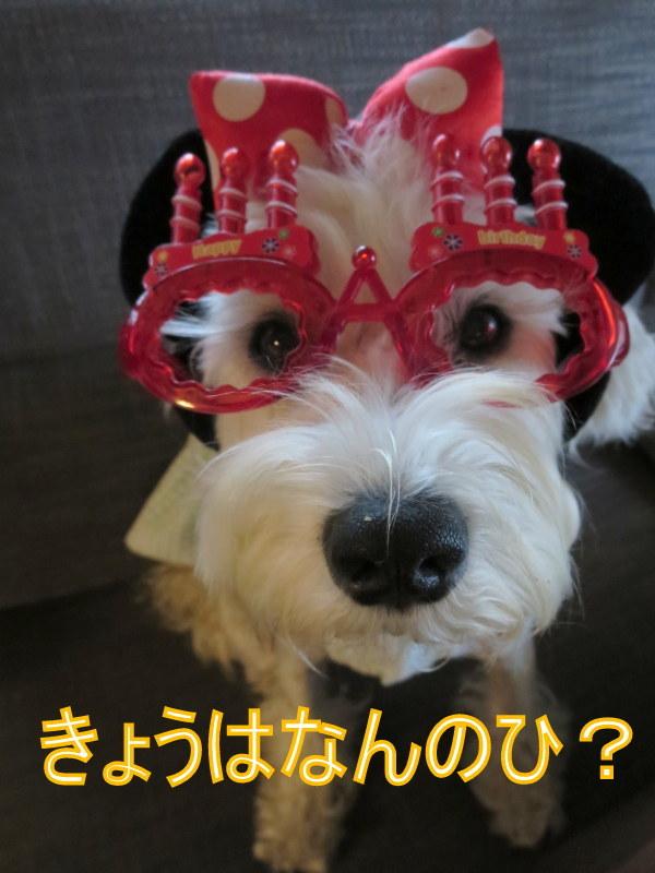 誕生日おめでとう~!!_d0264176_09193011.jpg