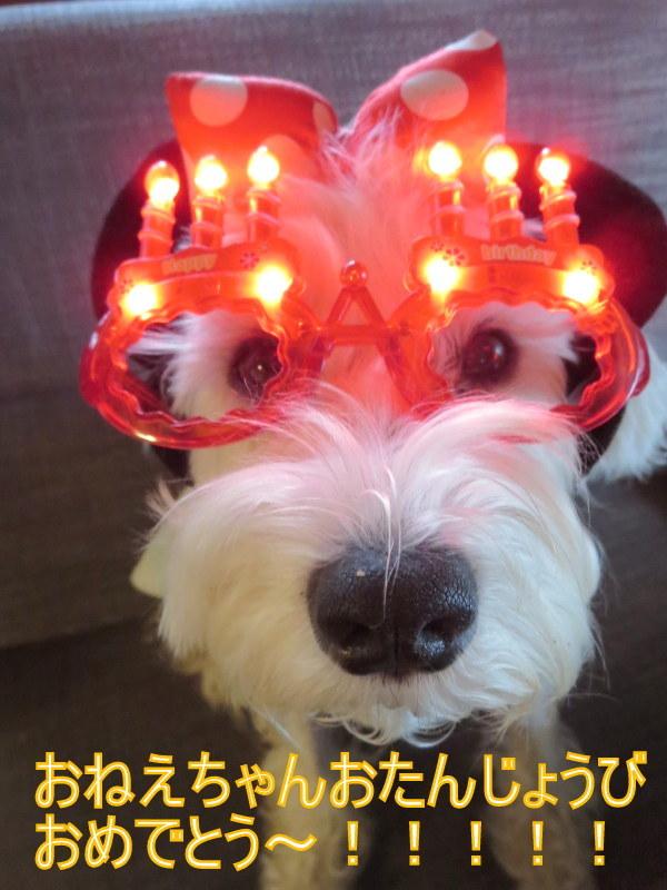 誕生日おめでとう~!!_d0264176_09253545.jpg