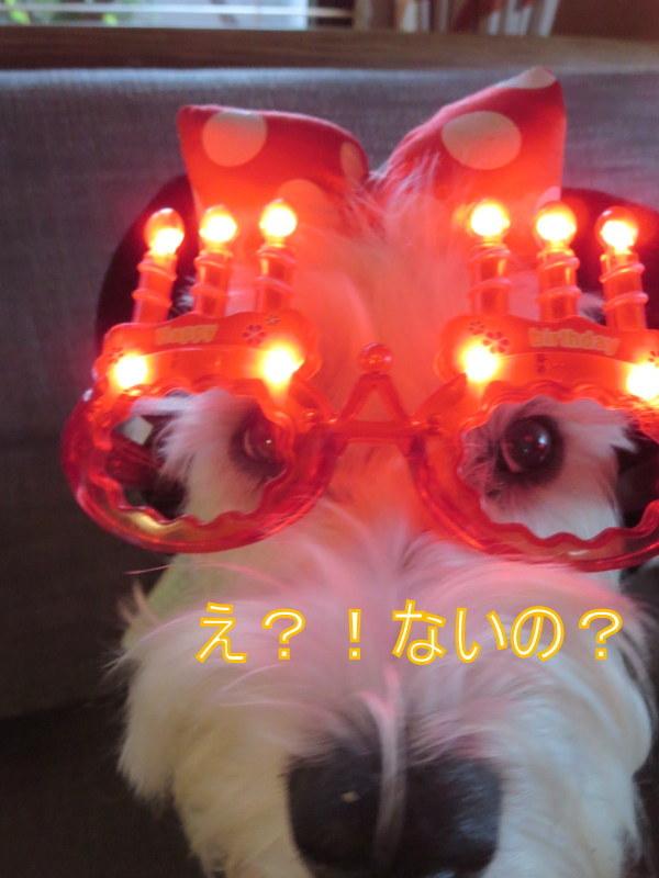 誕生日おめでとう~!!_d0264176_09305555.jpg