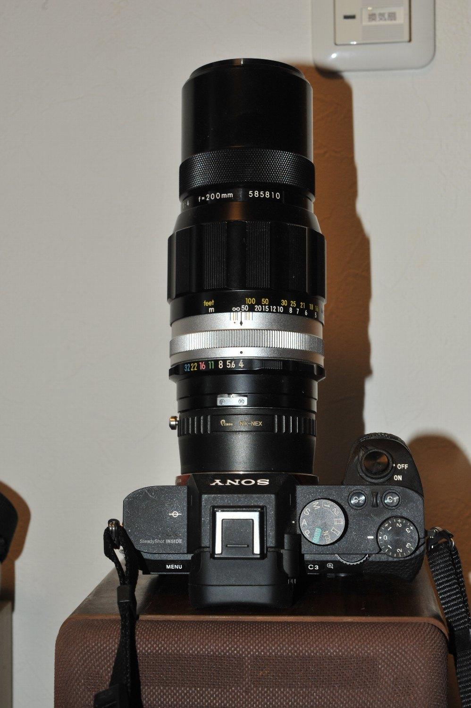 Nikkor-Q.C Auto 200mm F4 で スズメさん を_b0069128_08122176.jpg
