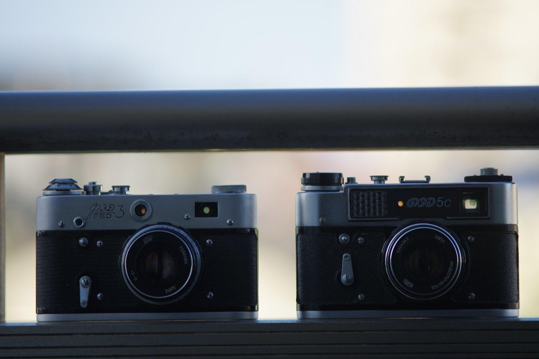Nikkor-Q.C Auto 200mm F4 で スズメさん を_b0069128_08124780.jpg