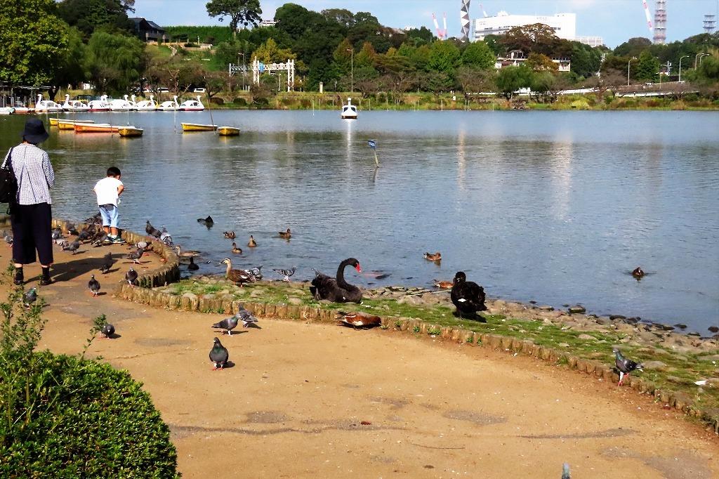 水戸の偕楽園公園で散策  最終回です_b0236251_17493452.jpg