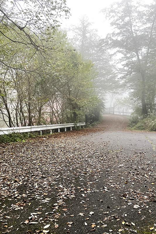 三頭大滝、美瀑でしたね 2021年10月16日_d0123571_22593263.jpg