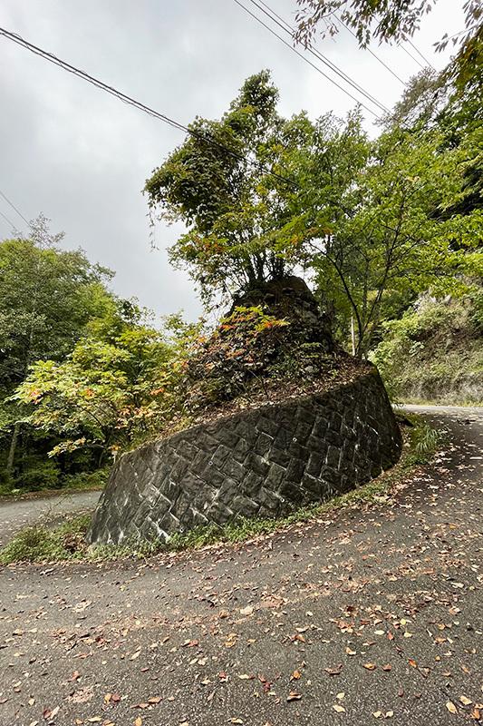 三頭大滝、美瀑でしたね 2021年10月16日_d0123571_23003661.jpg
