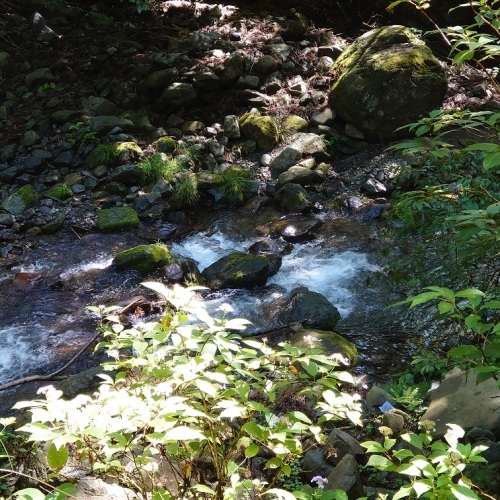 8月に行った奥多摩散策の取材で描いた渓流_e0309795_20232482.jpg