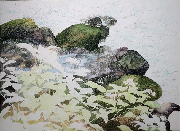 8月に行った奥多摩散策の取材で描いた渓流_e0309795_20234595.jpg