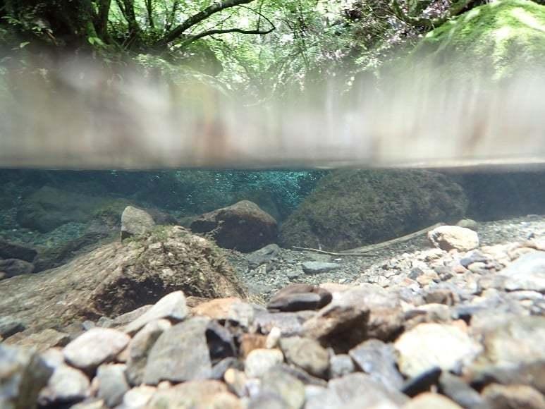 8月に行った奥多摩散策の取材で描いた渓流_e0309795_20241908.jpg