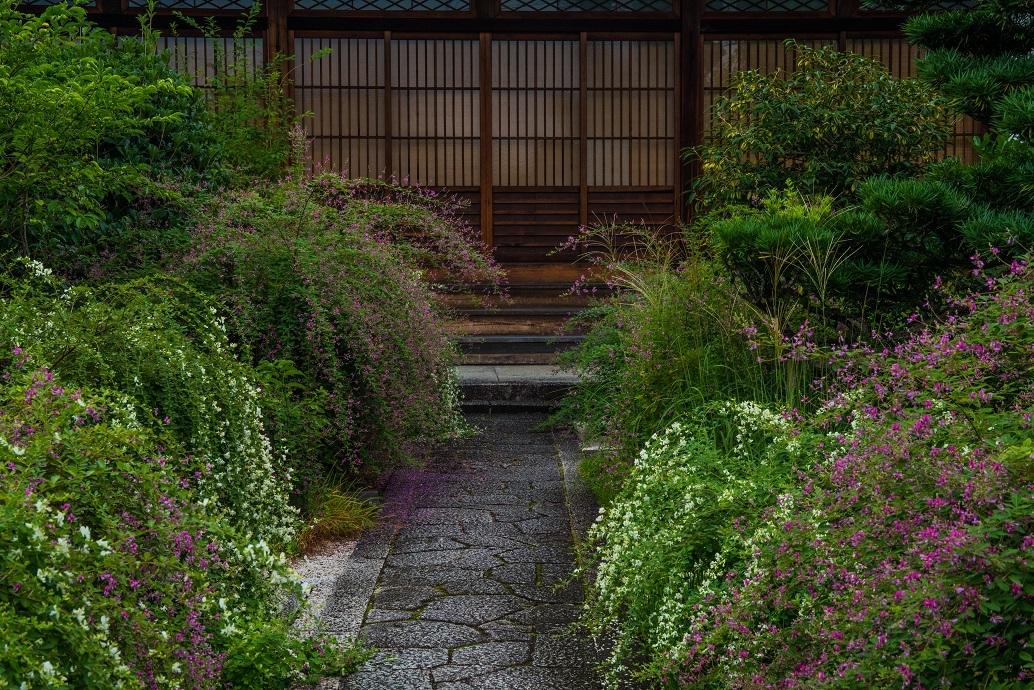 常林寺~萩_e0363038_10252977.jpg