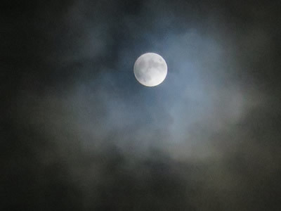 満月の夜に_e0262651_06590980.jpg